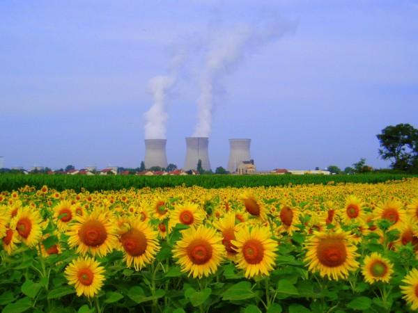 [Dossier] Tout savoir sur le démantèlement des centrales nucléaires en France