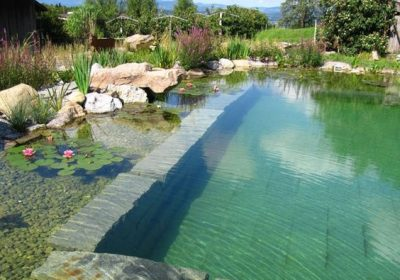 5 idées pour une piscine plus écologique