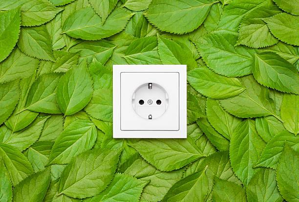 Prise électrique sur un mur de feuilles vertes